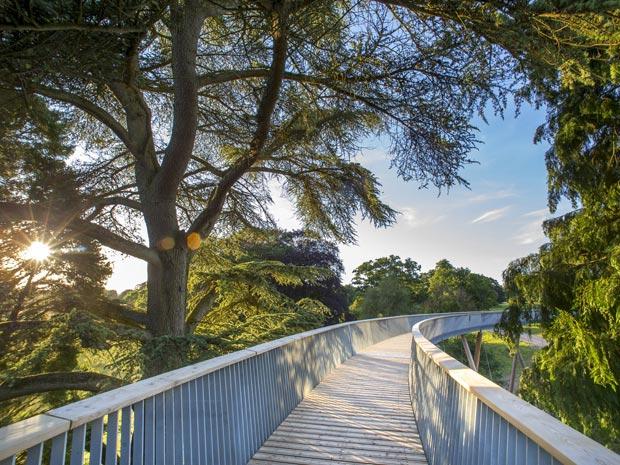 Membership at Westonbirt Arboretum