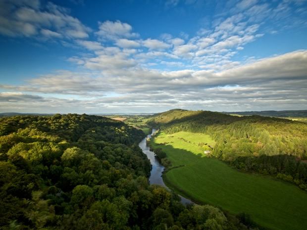 A Discover Pass for the Forest of Dean